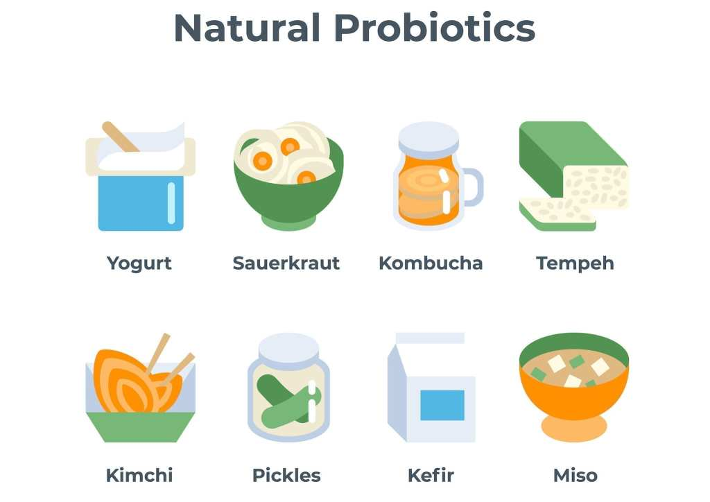 Natural Probiotics improves Gut Health and thus helps in reversing Thyroid disorder.