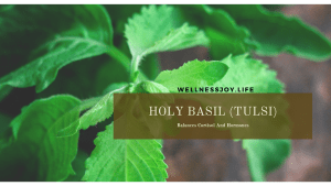 Holy Basil Balances Cortisol And Hormones
