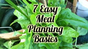 7 Easy Meal Planning Basic Tips