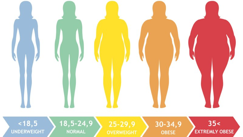 Body Mass Index (BMI) 1