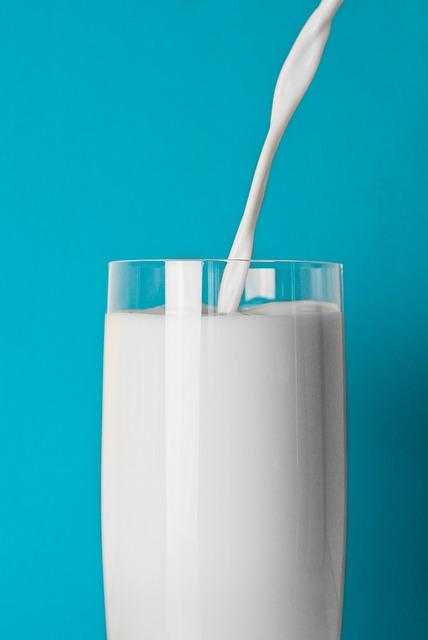 vegetarian protein source 11