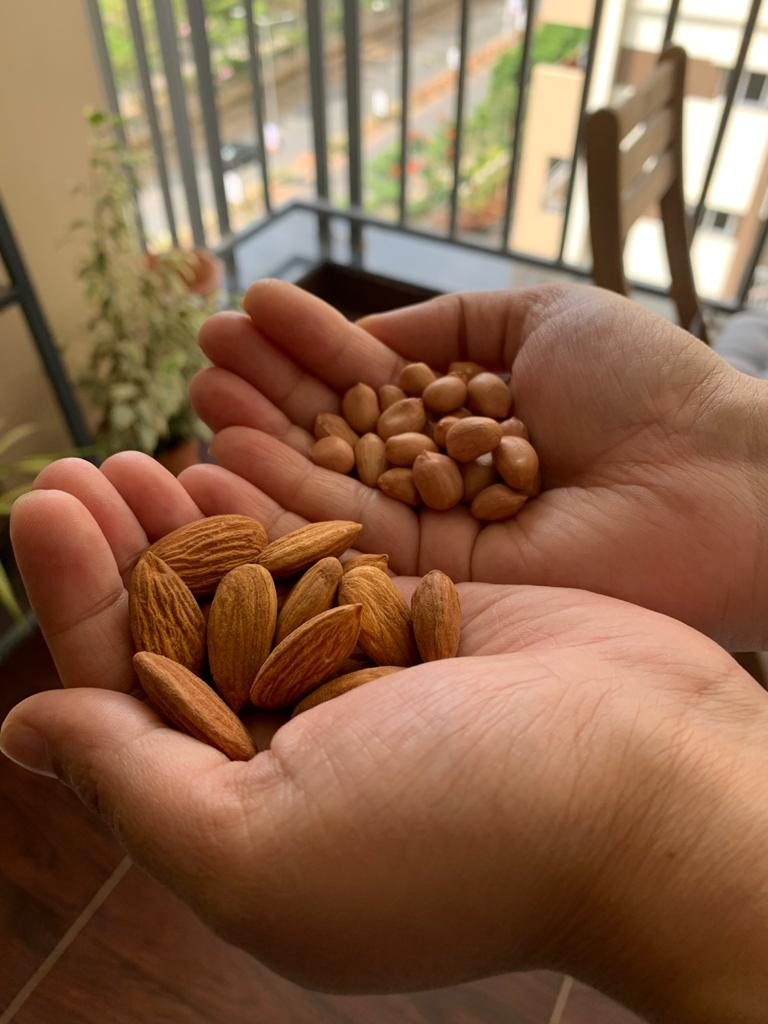 Peanut vs almond - a handful of any one of this is enough for a day