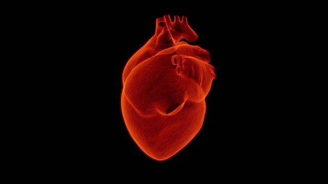 Best Indian diet guide for a heart patient
