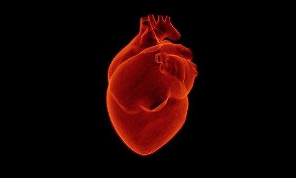 Indian diet for heart patient