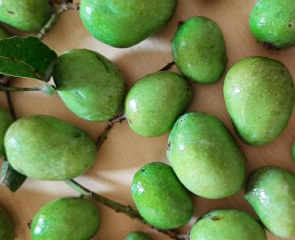 10 Healthy and tasty recipes using mango peels