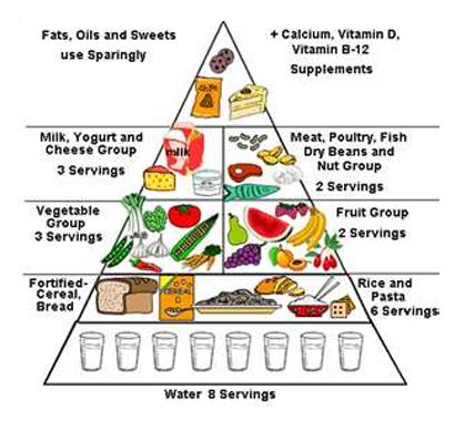 Wellness Sri Lanka   Nutrition