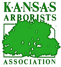Wellnitz Tree Care Kansas Arborist Topeka Emporia