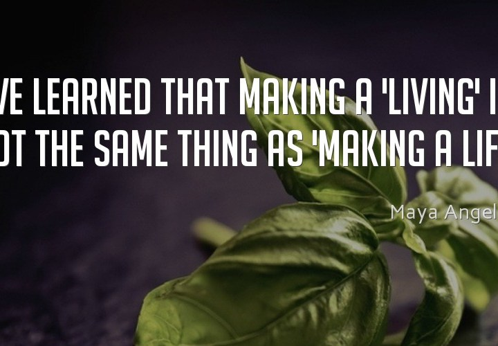 I've learned that making a living
