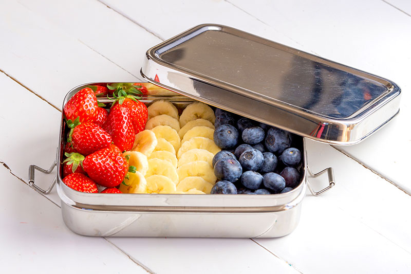 Stainless Steel Food Container for Healthy Leftovers