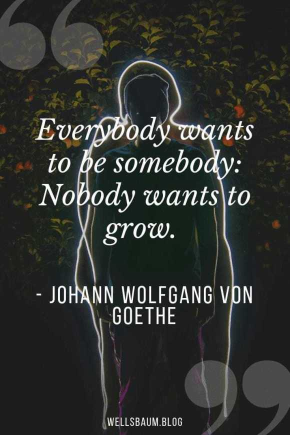 JOHANN WOLFGANG VON GOETHE.png