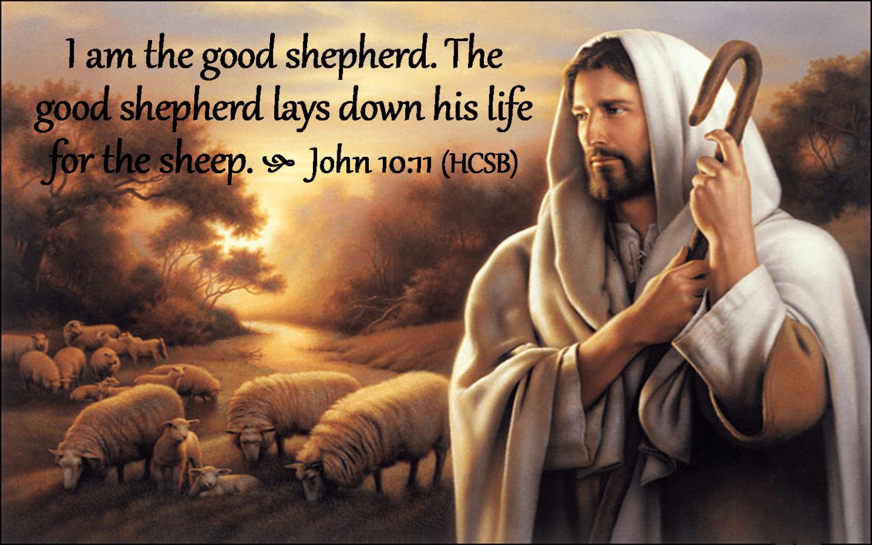 John 10 11