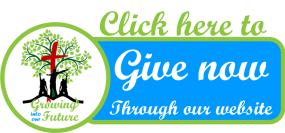 give now tree