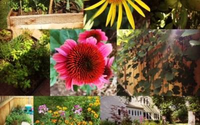 Gardeners Reflect