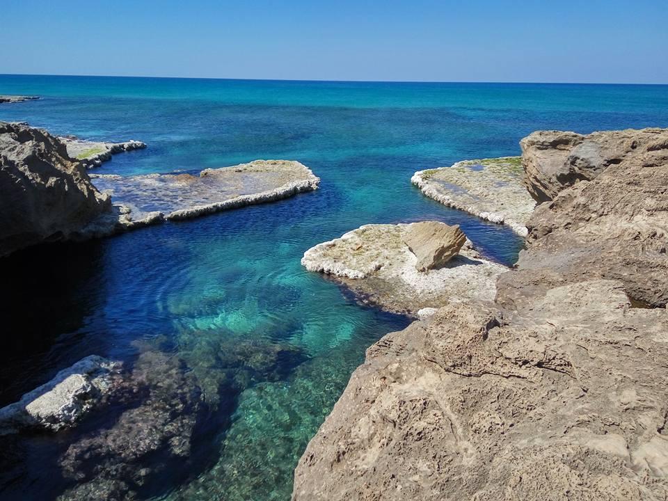 Mediterranean View, Habonim-Dor Nature Reserve, Daphna Rosenberg
