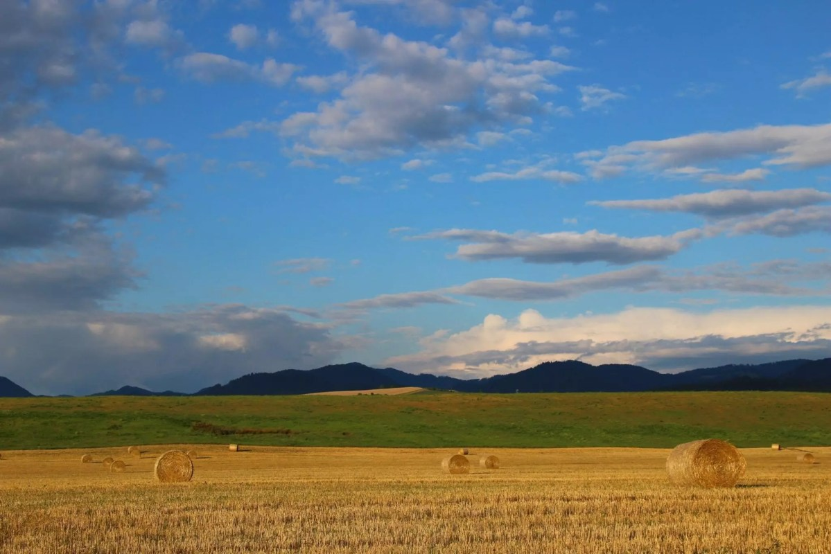 Fields and mountains near Necpaly, Slovakia