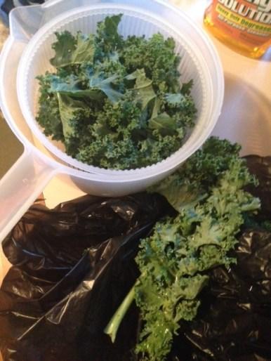 Step 1: Wash Kale