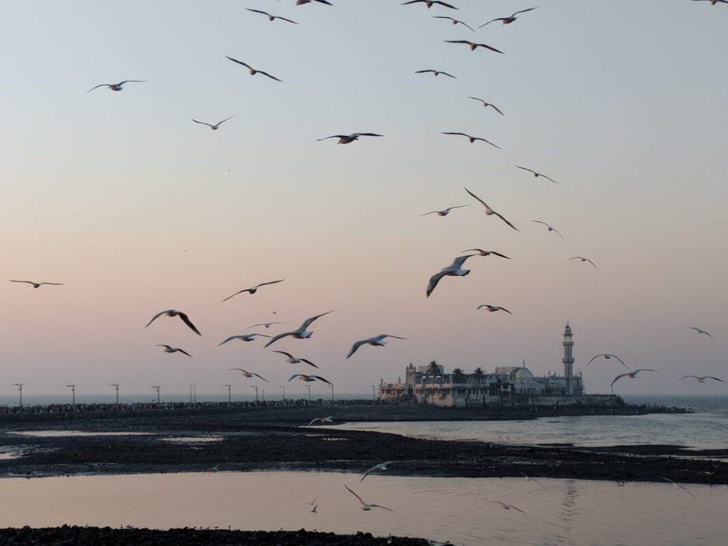 I went for a long walk at Haji Ali. I was there in 2003 last - the stench, the muck, the endless crowds, nothing has changed and yet you can overlook all of this easily and enjoy a breezy walk. (ok! yes, I am a biased and true Bombay lover)