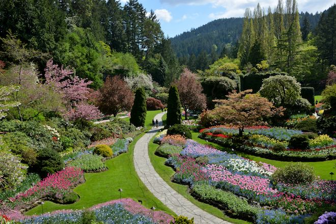 The sunken garden - Image credit the Butchart Gardens.