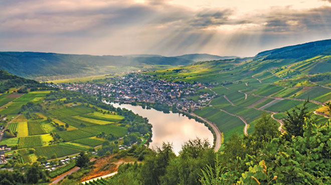 Valley of sunshine along the Moselle.