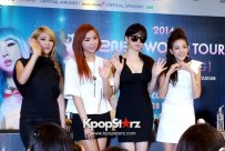 2ne1-at-open-press-conference-in-singapore-its-the-music-we-get-to-do-the-things-that-we-want-to-do-photos (5)