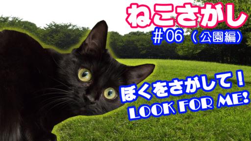 猫スポットでイケにゃんを探せ!ステージ6大井ふ頭中央海浜公園