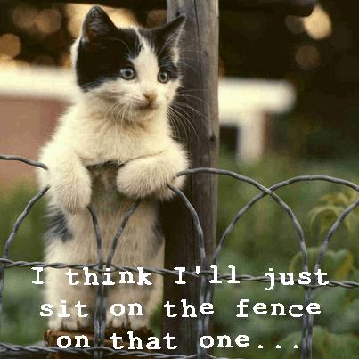 sit on fence