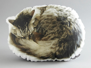 Cat-Pillow