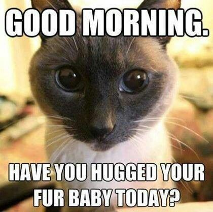 fur baby hug