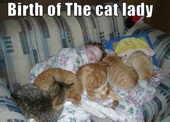 birth of cat lady