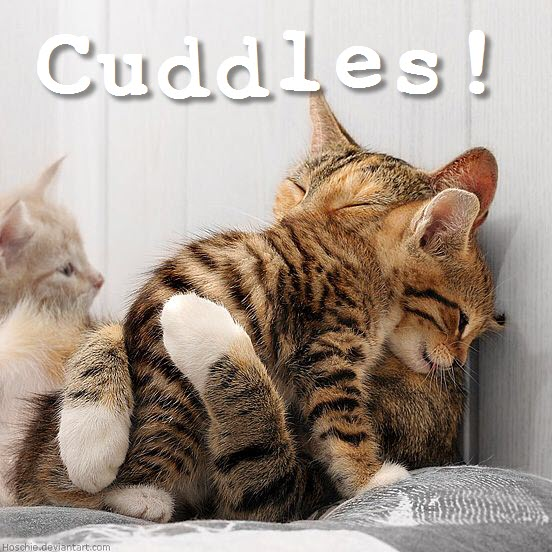 cuddles 21