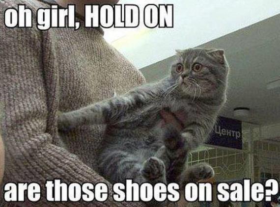 shoes lol