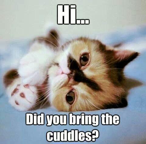 Hi cuddles