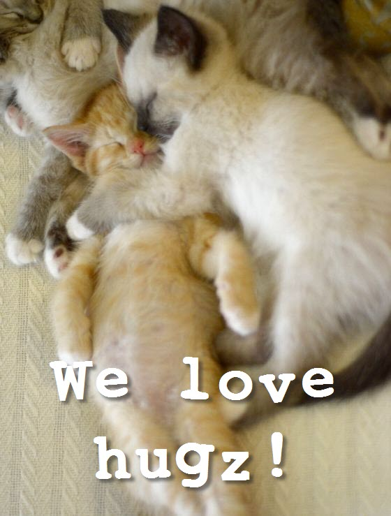we love hugz