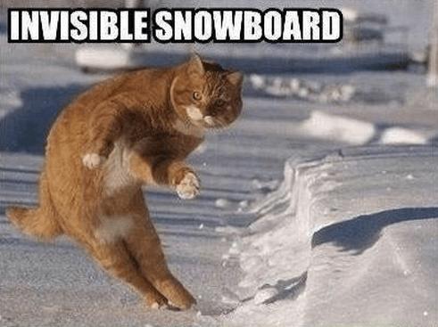 11 snowboard