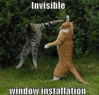 8 window
