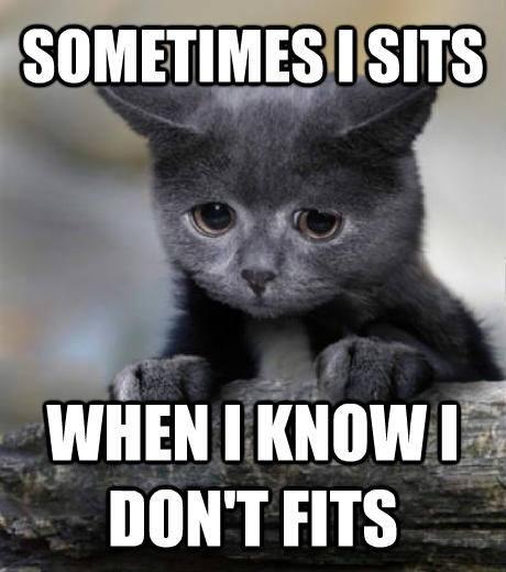sometimes i sits
