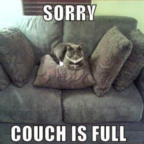 couch full lol