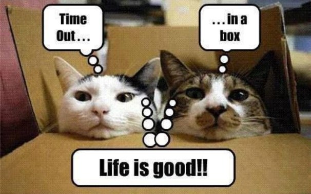 time out box lol