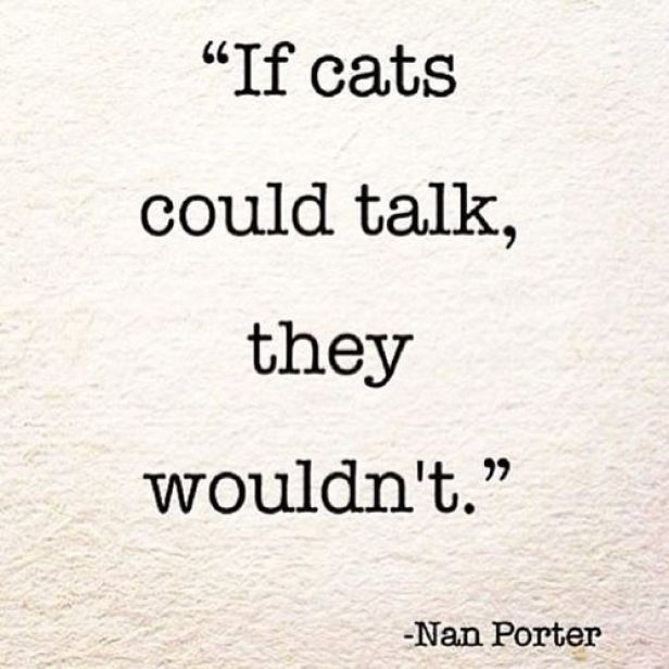 if cats could talk copy