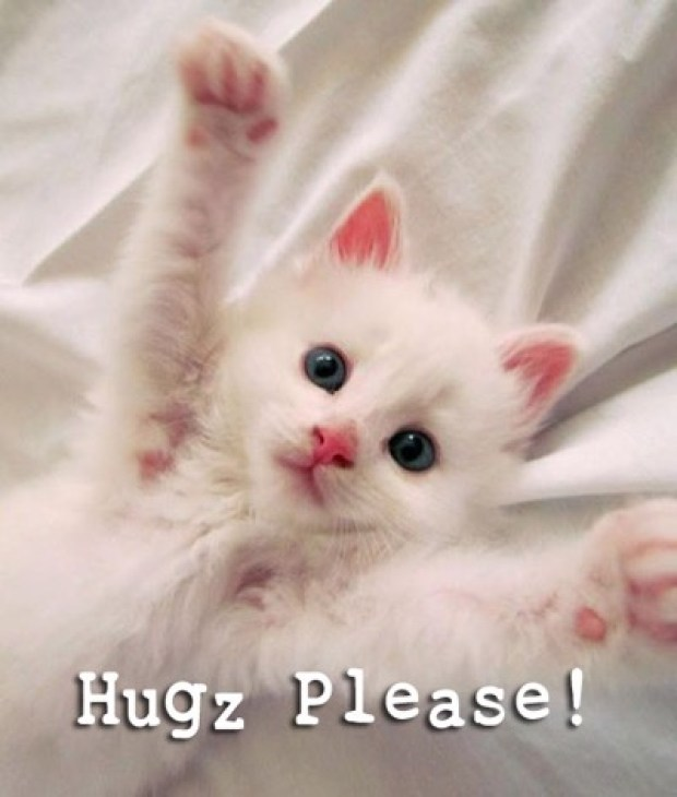 hugs please copy