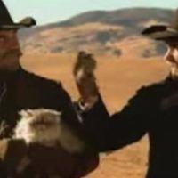 Cowboys Herding Cats !