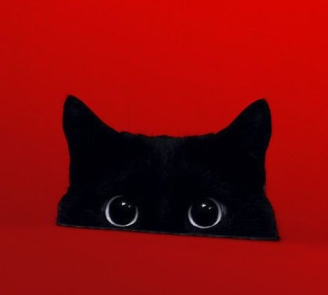 black-cats-rule-copy-3