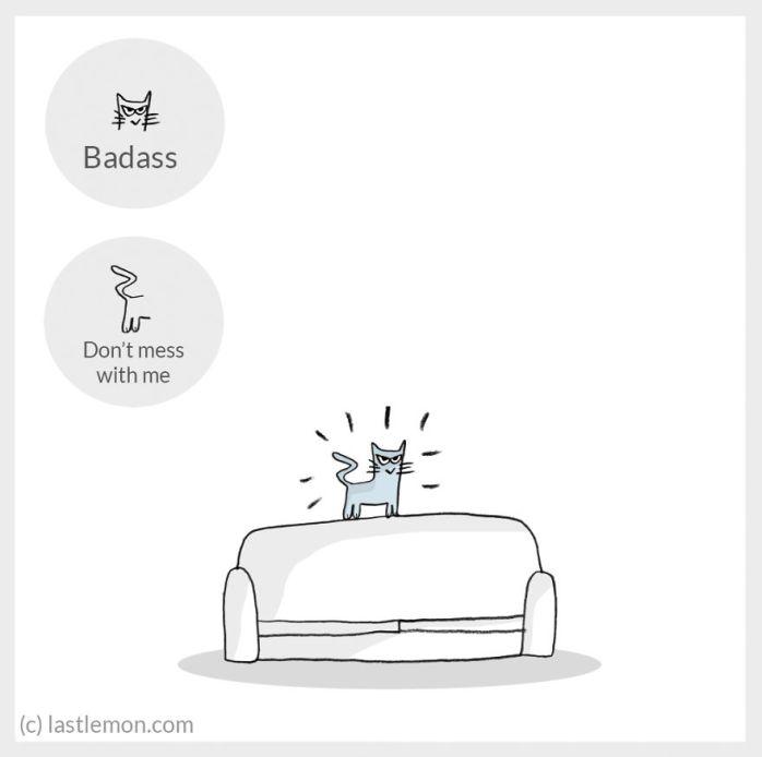 cat moods 17