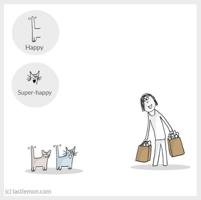 cat moods 3