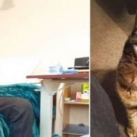 Cat Has Sweetest Reaction When She Sees Former Owner At Nursing Home