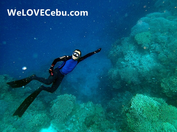 Freediving Cebu