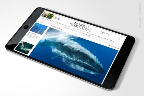 Apple Tablet – Gizmodo