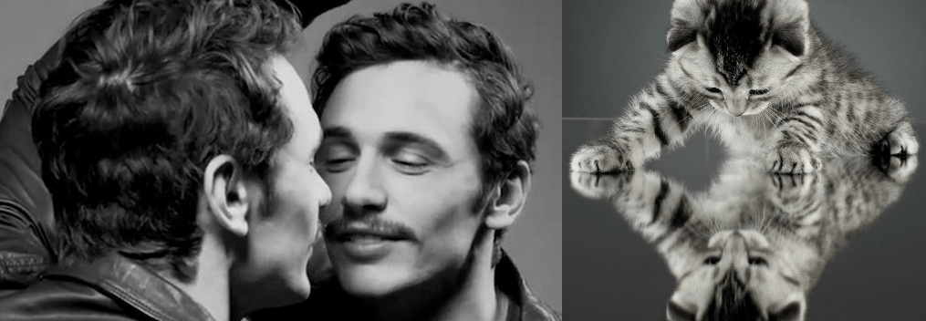 james franco and kitten
