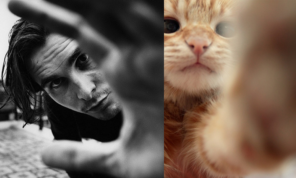 christian bale with kittens tumblr