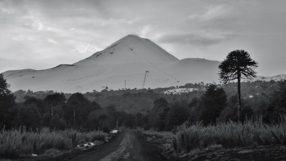 The approach road to Volcano Llaima